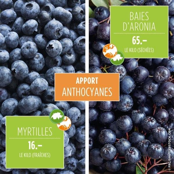 Myrtilles 16 fr./kg vs Baies d'aronia 65 fr./kg